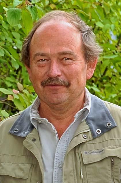 Daniel Trachsel